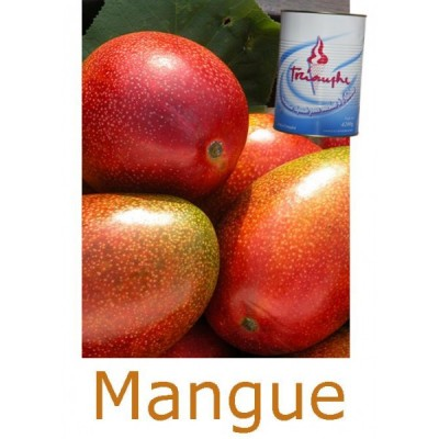 mix-a-glaces-mangue