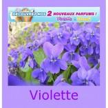 mix-a-glaces-violette